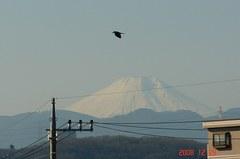 富士山12/29朝。クリックして大きくしてくださいね。r1