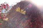 ドウダンツツジにイチョウの葉っぱ。クリックして大きくしてくださいね。t200