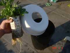 簡単な構成で水耕栽培ができます。クリックすると大きくなります。