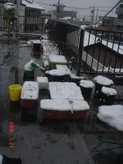 屋上の雪の様子。クリックすると大きくなります。