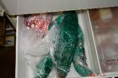 たことカツオ、早速冷蔵庫へ。クリックすると大きくなります。r