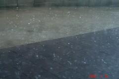 玄関先の窓越し撮影です。パチンコ玉大の雹です。クリックすると大きくなります。r