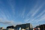 朝からいい天気