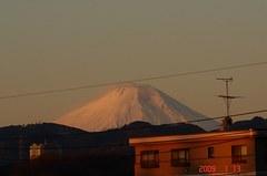 富士山09'1/13朝。クリックして大きくしてくださいね。r1