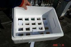 培地用の発泡スチロールの箱。クリックして大きくしてくださいね。r1