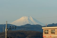富士山09'1/26。クリックして大きくしてくださいね。r1