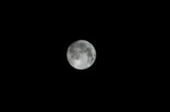 中秋の名月。クリックして大きくしてくださいね。r1