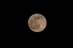 十六夜満月。クリックすると大きくなりますR1。