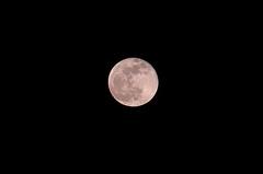 元日に満月。クリックすると大きくなりますR1。