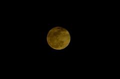 満月、トリムしてます。クリックすると大きくなりますR1。
