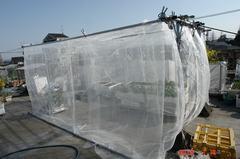 物干し場を防虫エリアに改造。クリックすると大きくなりますR1。