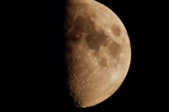 九夜月の等倍トリムです、AF100−300。クリックすると大きくなりますα55。