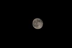 十六夜の月。クリックすると大きくなりますR1。