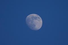 まだ明るい青空に十三夜のお月さん