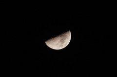 天頂に上弦の月。α55 SLT-A55VY 70-300mm F4.5-5.6 G SSM SAL70300G。クリックすると大きくなります。