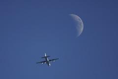 昼間のお月さんとC−130